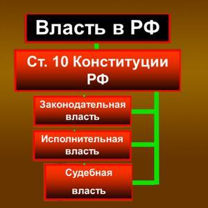Органы власти Пушкина