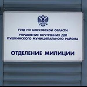 Отделения полиции Пушкина