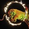 Цирки в Пушкине